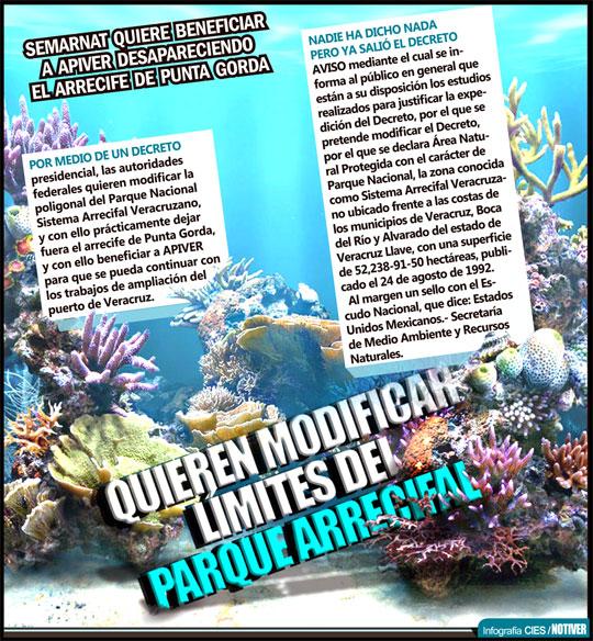 Desaparecerá el parque arrecifal de Punta Gorda