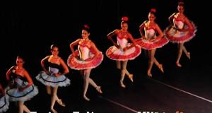 """Presenta Ayuntamiento el libro """"Ballet Clásico, Origen e Historia en la Ciudad de Veracruz"""""""