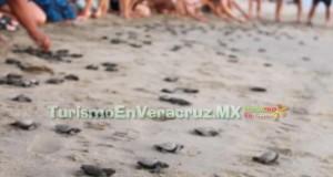 Lanza Sectur campaña Ven y vive el verano en Veracruz