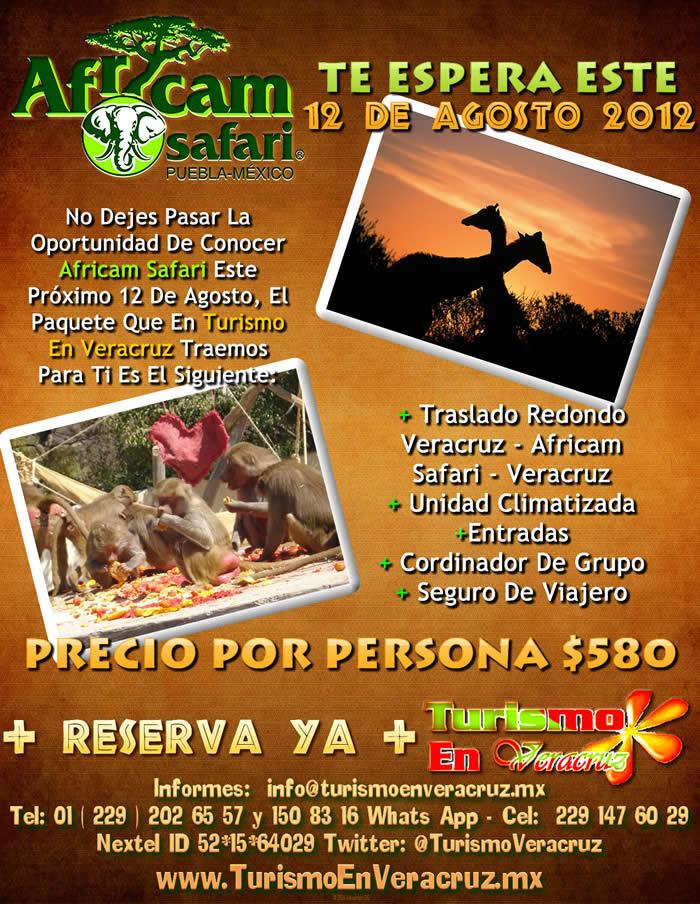 Africam Safari Te Espera Este 12 De Agosto
