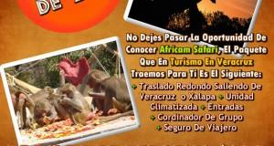 Vamos a Africam Safari Este 4 De Agosto 2013 Saliendo De Veracruz y Xalapa