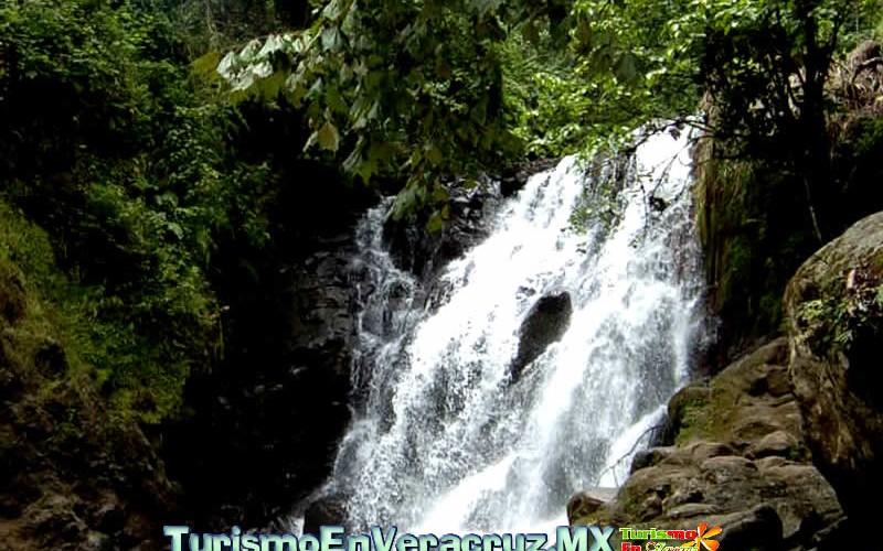 Por sus bellezas naturales, Xico, Coatepec y Jalcomulco, lugares ideales para descansar en vacaciones
