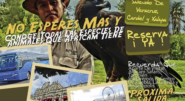 #Excursión a #AfricamSafari Este 18 de Septiembre Saliendo De #Veracruz y #Xalapa