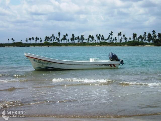 Tamiahua