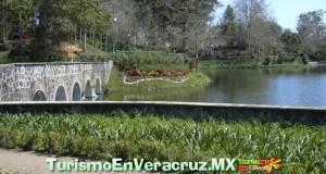 Eventos Culturales En Xalapa Durante Abril De 2012