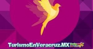 Continúa abierta la convocatoria de la Bienal de Arte Veracruz 2014