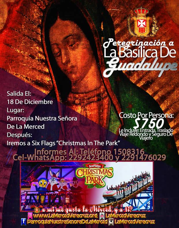 Peregrinación a La Basílica De Guadalupe y Visita a Six Flags