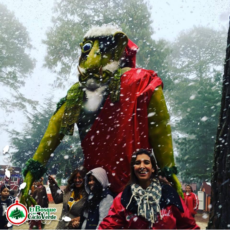 Bosque El Ciclo Verde